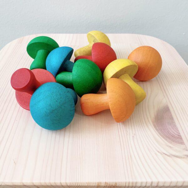 QT Coloured Mushroom 1 scaled