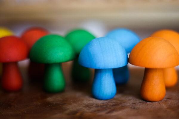 QT Coloured Mushroom