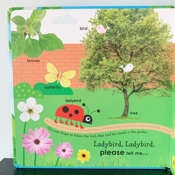 First words with ladybird 3 scaled